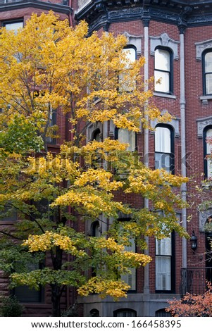 Autumn color on the city streets of an urban neighborhood near downtown Chicago, Illinois.