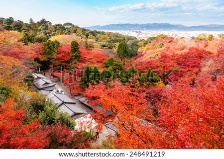 autumn colored leaves in kiyomizu-dera temple, kyoto - stock photo