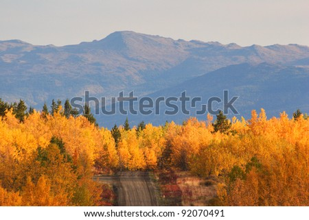 Autumn colored trees along road in British Columbia - stock photo