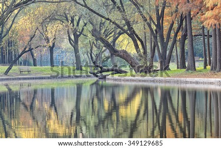 Autumn colorful foliage over lake with beautiful woods in red and yellow color