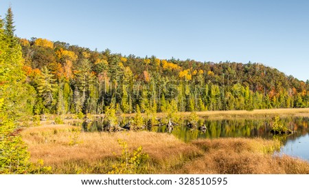 Autumn colors at Iargo Springs, AuSable Scenic Byway,  in the Huron National Forest, near Oscoda, Michigan.