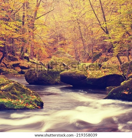 Autumn colors at mountain river banks. Fresh green mossy boulders on river banks covered with vivid colors.  - stock photo