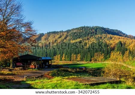 Autumn Colors in Cumbria, England - stock photo