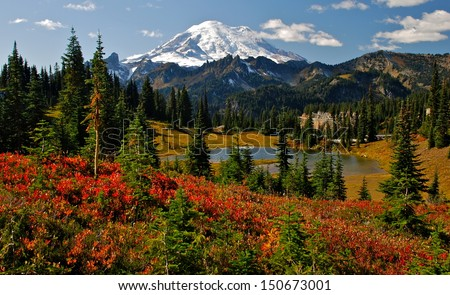Autumn colors in Mt. Rainier National Park - stock photo