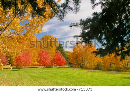 Autumn colors in New England - stock photo