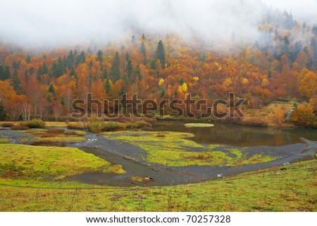 Autumn colors in the little mountain river - stock photo