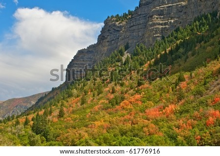 Autumn colors in the Wasatch Mountains, Utah - stock photo