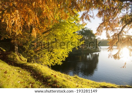 Autumn colors, looking through the backlit trees and across lake. - stock photo