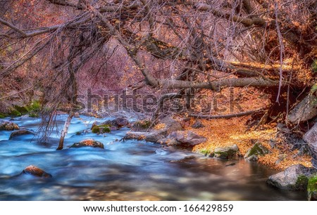 Autumn colors on a mountain river/ The Golden Trail