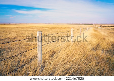 autumn colors on Rural grasslands, Colorado, United States - stock photo