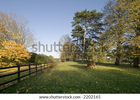 autumn colour on the chateau impney estate droitwich spa worcestershire england uk