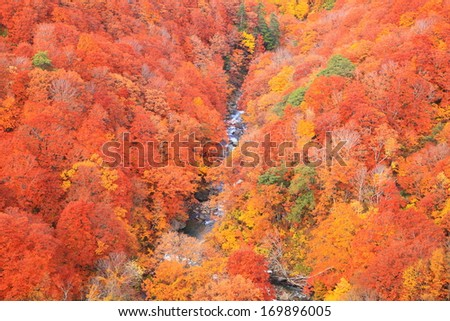 Autumn colours of Jougakura valley, Aomori, Japan - stock photo