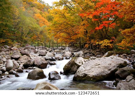 Autumn colours of Nakatsugawa valley in Fukushima, Japan - stock photo