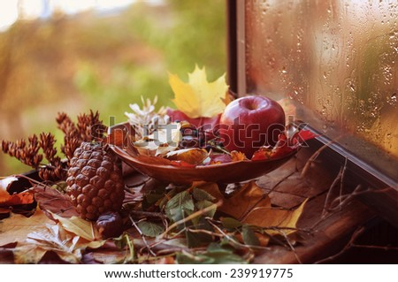 Autumn composition on the old wooden window sill - stock photo