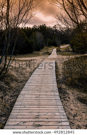 Autumn composition with wooden pathway in the park and dramatic sky at sunset