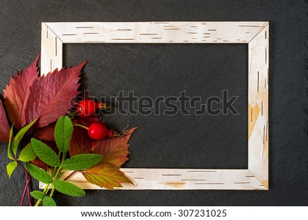 Autumn concept design: frame from birch bark, red and green leaves with berries of brier on a slate chalkboard with copy space - stock photo