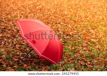 Autumn concept. Healthy active lifestyle. Red umbrella on autumn leaves background. Foggy misty day - stock photo