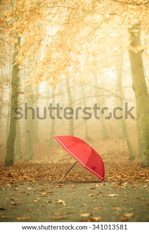 Autumn concept. Healthy active lifestyle. Red umbrella on autumn leaves background. Foggy misty day, sun rays - stock photo