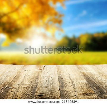 Autumn concept with empty wooden planks and blur tree on background - stock photo