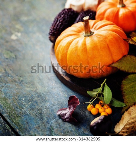 Autumn concept with seasonal fruits and vegetables on wooden board - stock photo