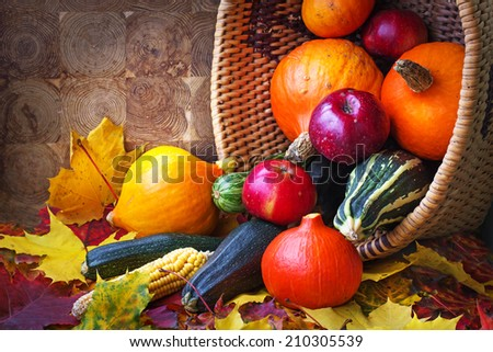 Autumn concept with seasonal fruits and vegetables/organic food background; Autumn harvest with Farmers Vegetable fruits on dark wooden background/ Thanksgiving day concept - stock photo
