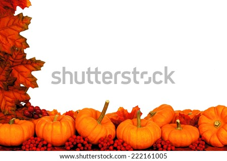 Autumn corner border of pumpkins and red leaves over white