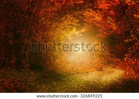 Autumn country road over sunlight - stock photo