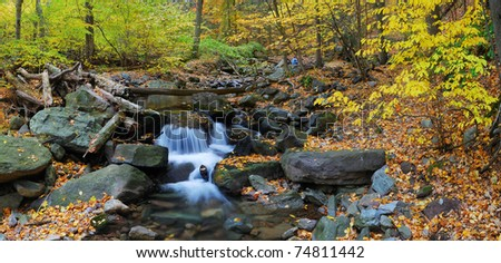 Autumn creek closeup panorama with yellow maple trees and foliage on rocks in forest with tree branches. - stock photo
