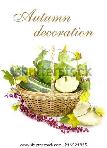 Autumn decoration: group of various kind of ripe squashes in the basket on white background - stock photo