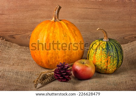 Autumn decoration on a textured vintage background
