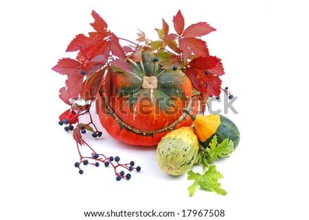 autumn decoration on white background - stock photo