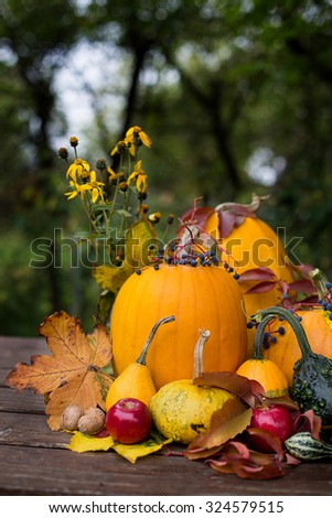 autumn decoration, with colored pumpkins - stock photo