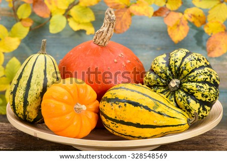 autumn decoration with pumpkin and leaves - stock photo