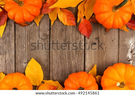 Autumn double border of pumpkins and leaves against a rustic old wood background
