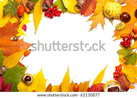 autumn elements frame - acorn, chestnut, viburnum, rowan, briar and multicolored leaves - stock photo