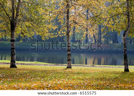 autumn embankment of a river in a Petersburg's park