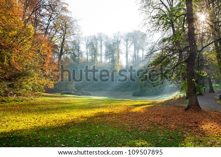 Autumn Evening in the park. The slanting rays of the sun. - stock photo