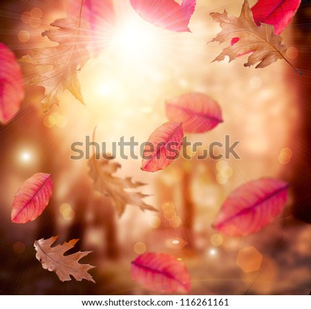 Autumn. Fall. Autumnal Background.Leaves - stock photo