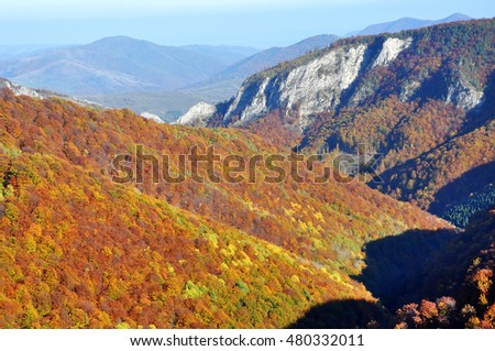 Autumn fall. Colorful autumn forest landscape in the mountains