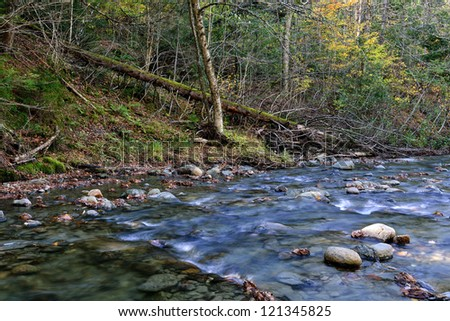 Autumn fall forest with fallen logs, and clear rock covered stream in northern vermont at late afternoon - stock photo