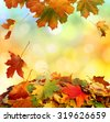 Autumn falling leaves - stock photo