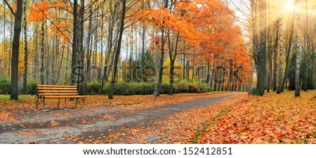 Autumn falling leaves in a city park - stock photo