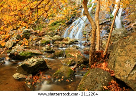 Autumn Falls - stock photo