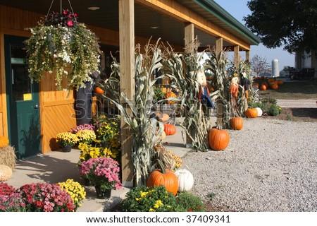 autumn farm market with pumpkins - stock photo