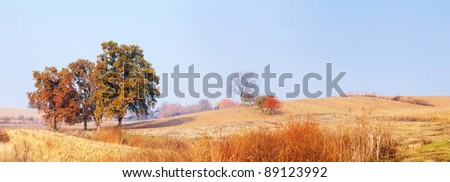 Autumn field and trees - stock photo