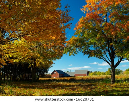 Autumn field with colorful trees - stock photo