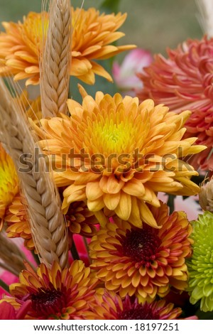 Autumn flowers, ready for the holiday season. - stock photo