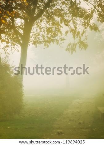 Autumn fog came down on the park - stock photo