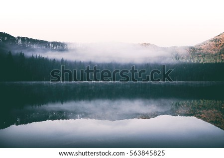 Autumn foggy landscape.lake view