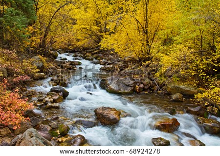 Autumn foliage along Big Cottonwood Creek, near Salt Lake City, Utah - stock photo